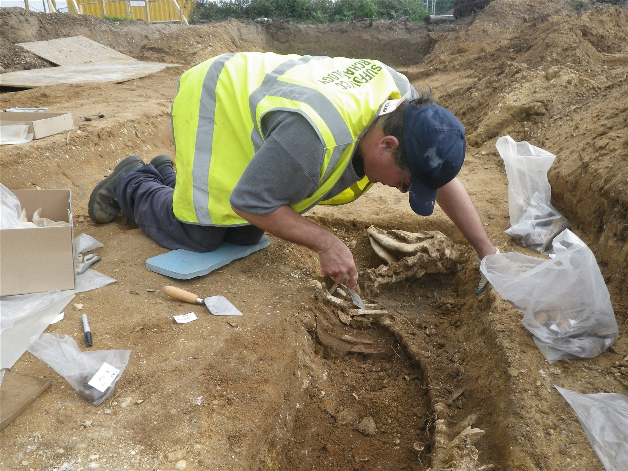 Case Study (Excavation): Roman occupation at Campsea Ashe, Suffolk