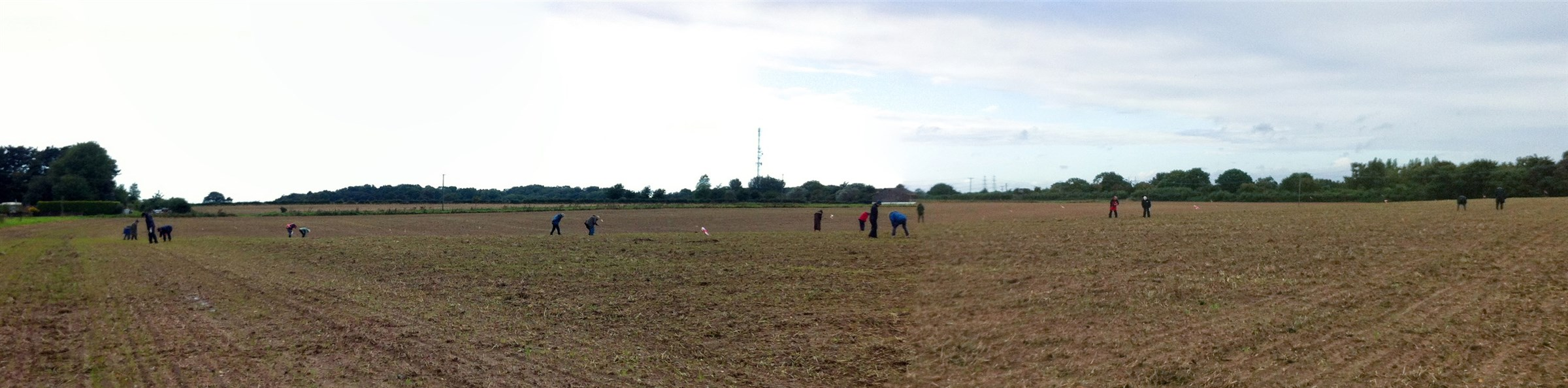 Fieldwalking with the Aldeburgh and District Local History Society, September 2015