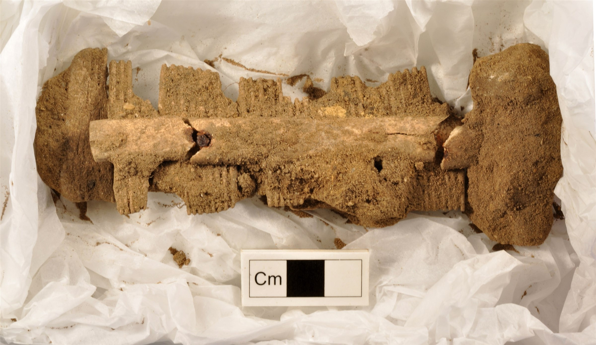 Anglo-Saxon bone comb from the excavations at Culford